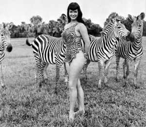 BettieZebras